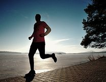 Single man running workout, excercise for run near frozen lake royalty free stock photos