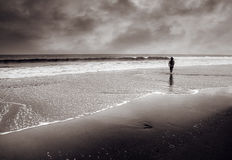 Single man walk at coastline. Dramatic landscape of single man walk at beach Stock Image