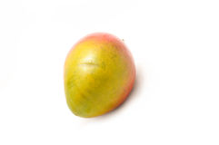Single mango Stock Image