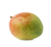 Single mango fruit isolated. Single ripe mango fruit covered with water drops isolated over the white background Stock Photography