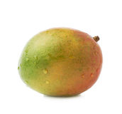 Single mango fruit isolated. Single ripe mango fruit covered with water drops isolated over the white background Royalty Free Stock Photo