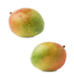 Single mango fruit isolated Stock Image
