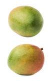 Single mango fruit isolated Royalty Free Stock Photos