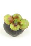 Single mangosteen Stock Photo