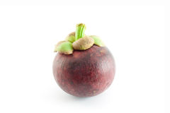 Single mangosteen Stock Images