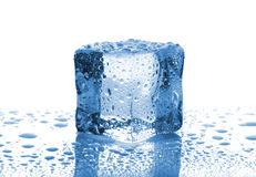 Single melted ice cube Royalty Free Stock Photos