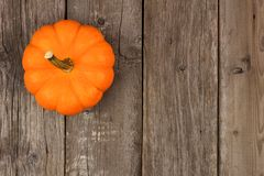 Single mini pumpkin, above view in corner of wood background Stock Images
