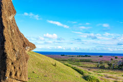 Single Moai Royalty Free Stock Photo