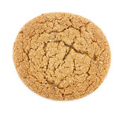 Single molasses cookie Stock Photography
