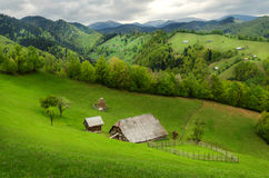 Single in the mountains. This beautiful place is in Romania, Brasov. This place is beautiful Royalty Free Stock Photography
