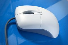 A single Mouse. PC Mouse on blue isolated Royalty Free Stock Photography