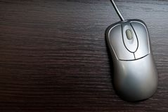 Single mouse Stock Photography