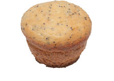 Single muffin Stock Image
