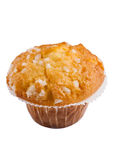 Single muffin with lemon taste isolated on white background Royalty Free Stock Photography