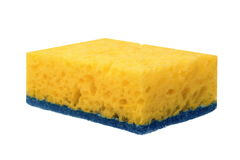 Single New Absorbent Sponge With Hardwearing Scourer Isolated On stock images