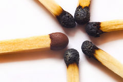 Single new match against burned matches Stock Image