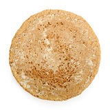 Single oatmeal cookie Stock Image