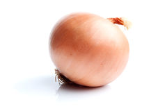 Single onion  on white Stock Photography