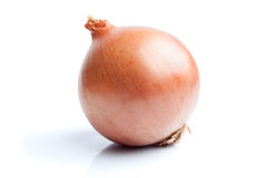 Single onion  on white Royalty Free Stock Photography
