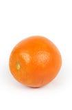 Single Orange Royalty Free Stock Photography