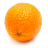 Single orange Royalty Free Stock Photos