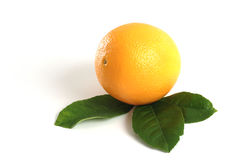 Single orange decorated with green leaves royalty free stock images