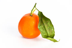 Single orange fruit with a leaf Stock Image