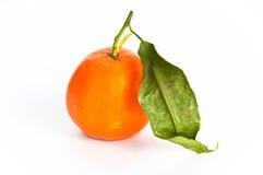 Single orange fruit with a leaf. Single ripe orange fruit with a leaf on white, isolating background stock image