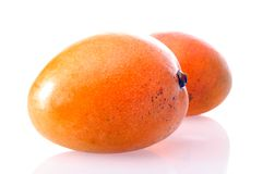 Single orange mango Stock Photos