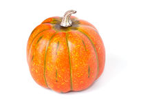 Single Orange Pumpkin on a white background. A single orange pumpkin on a white horizontal background with room for text royalty free stock images