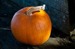Single orange pumpkin on wooden cart. Close-up of a single orange pumpkin on the wooded cart stock photos