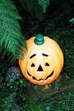 Orange smiling Halloween character face pumpkin Royalty Free Stock Photo