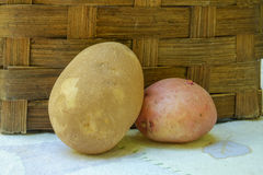 A single organic Russet and single red potato sit up against a w Stock Images