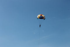 Single parachuter in the blue sky Stock Images