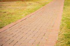 Single Pathway Stock Image