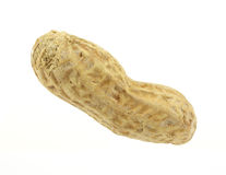 Single Peanut Royalty Free Stock Images
