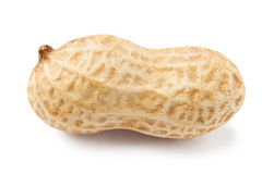 Single peanut Royalty Free Stock Image