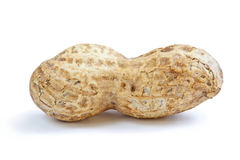 Single Peanut Royalty Free Stock Photo
