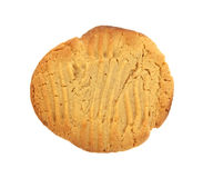 Single Peanut Butter Cookie. A large golden brown peanut butter cookie royalty free stock image