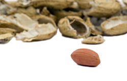 Single peanut with empty shells Royalty Free Stock Photography
