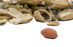 Single peanut with empty shells Royalty Free Stock Photography