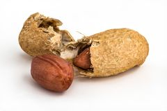 Single peanut - isolated Royalty Free Stock Images