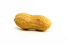 Single Peanut Stock Image