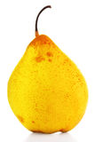 A single pear Royalty Free Stock Photo