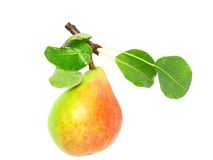 Single pear with stem and green leaf. Isolated. Stock Photography