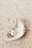 Single pearl in oyster sea shell on sand Royalty Free Stock Photography