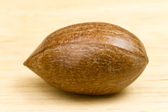 Single Pecan. With beige background Stock Images