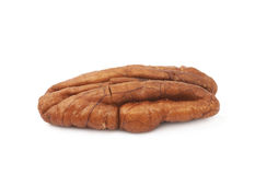 Single pecan nut isolated Royalty Free Stock Photos