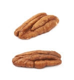 Single pecan nut isolated Royalty Free Stock Image