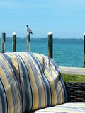 A single perched on a post by the water next to a dock with a couch by the ocean with blue sky and blue water Stock Image